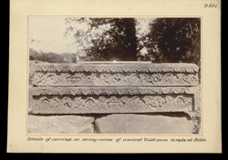 Details of carvings on string-course of ancient Vaishnava temple at Bilas